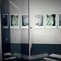 Wystawa zdjęć w Park Innovaare